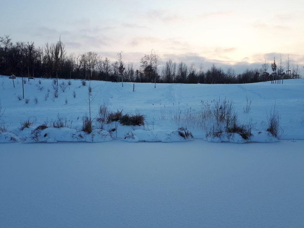 Ein zugefrorener Teich mit schneebedecktem Ufer